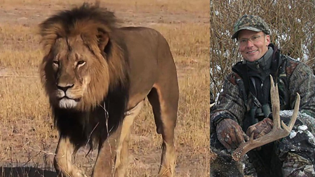 American dentist Walter Palmer was vilified online after it emerged he was the hunter behind the death of Cecil the Lion. Source: CNN